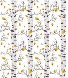 Birch tree autmn. seamless pattern stock images