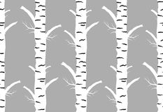 Birch tree autmn. seamless pattern. Birch tree.seamless pattern.vector.fabricDesign element for wallpapers, web site background, baby shower invitation, birthday Royalty Free Stock Image