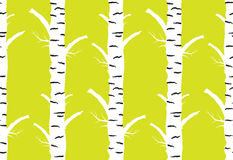 Birch tree autumn. seamless pattern yellow background. Birch tree.seamless pattern.vector.fabricDesign element for wallpapers, web site background, baby shower Royalty Free Stock Photo