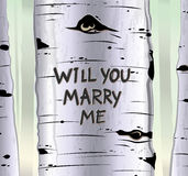 Birch tree card with carved text will you marry me Stock Photo