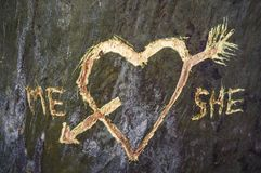 Birch tree with carved heart crossed by a love arrow stock image