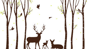 Birch Tree with deer and birds Silhouette Background Royalty Free Stock Image
