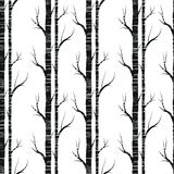 Birch tree.seamless pattern..fabricDesign element for wallpapers, web site background, baby shower invitation, birthday card Stock Image