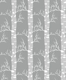 Birch tree.seamless pattern. Vector.fabricDesign element for wallpapers, web site background, baby shower invitation, birthday card, scrapbooking, fabric print Royalty Free Stock Image