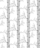 Birch tree.seamless pattern. Vector.fabricDesign element for wallpapers, web site background, baby shower invitation, birthday card, scrapbooking, fabric print Stock Images