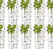 Birch tree.seamless pattern.vector.fabricDesign element for wallpapers, web site background, baby shower invitation, birthday card Royalty Free Stock Photos