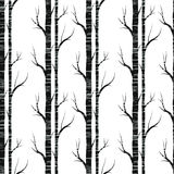 Birch tree.seamless pattern.vector.fabricDesign element for wallpapers, web site background, baby shower invitation, birthday card Royalty Free Stock Images