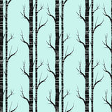 Birch tree.seamless pattern.vector.fabricDesign element for wallpapers, web site background, baby shower invitation, birthday card Stock Image
