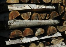 Birch tree wood pile Stock Image