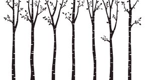 Birch tree wood silhouette on white background stock illustration