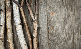 Birch trees background Stock Photos