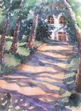 Birch watercolor retro summer alley in the park Stock Photos