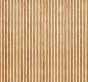 Birch wood section texture Royalty Free Stock Photography