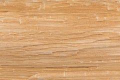 Birch wood texture Stock Photos