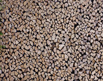 Birch wood in the woodpile. Wooden texture Stock Images