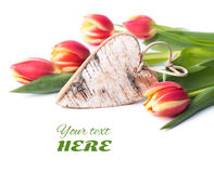 Birch wooden heart and tulips on white Royalty Free Stock Image