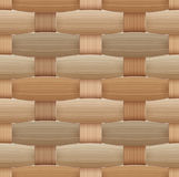 Birchbark Basketwork Royaltyfri Bild
