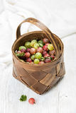 Birchbark koszykowy pełny dojrzali zieleni i czerwoni agresty Zdjęcia Royalty Free