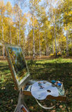 Birches in the drawing board. Northeast China changchun south lake park of birches, when autumn came to the whole of birches became a golden world, many painters Royalty Free Stock Image