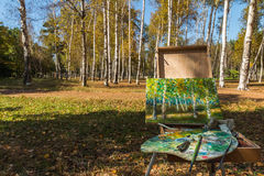 Birches in the drawing board Stock Photography