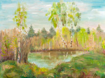 Birches naer pond Stock Photography
