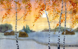 Birches in snowy field. Watercolor landscape. Yellowing birch trees near the trail in snowy field Stock Photography