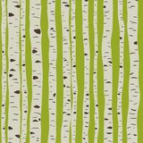 Birches in vector Royalty Free Stock Images