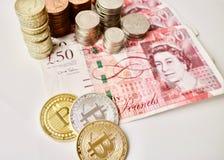 Bircoins & pund Royaltyfri Foto