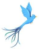 Bird. Blue bird flying isolate on the white background Stock Image