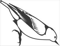 Bird. Vector image of a bird Royalty Free Stock Images