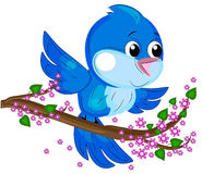 Bird. Beautiful little bird. summer time Stock Photo