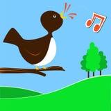 Bird. Black bird chirping on a branch Royalty Free Stock Photo