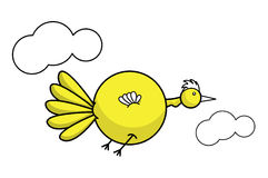 Bird. Fat yellow bird flying between two clouds Stock Images