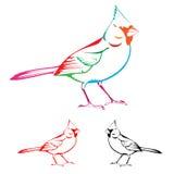 Bird. Beautiful colorful bird pattern on white background Stock Image