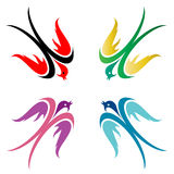 Bird. Four colorful birds in flight on white background Royalty Free Stock Photos
