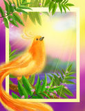 Beautiful gold bird of happiness. Multi-colored illustration Stock Photos