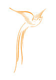 Bird. Illustrated bird its best use for your logo works vector illustration