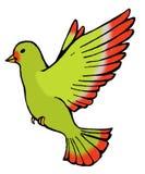 Bird. Green bird flying nature animal Royalty Free Stock Image