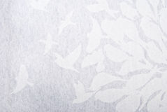 Bird abstract background Royalty Free Stock Image