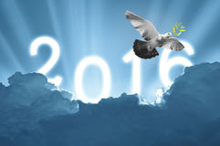 Bird into the air on sky 2016 background , all concept , beauty. Freedom,peace ,spirituality stock image