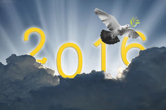 Bird into the air on sky 2016 background , all. Concept , beauty ,freedom,peace ,spirituality royalty free stock photography