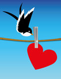 Bird attracted by the light. Pendant heart in a rope and a bird upon it Stock Photos