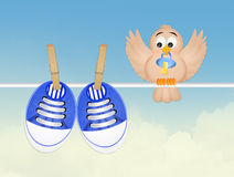 Bird and baby shoes Stock Image