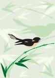 Bird background Stock Photo