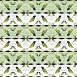 Bird background pattern Royalty Free Stock Photos