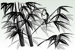Bird on bamboo Stock Image