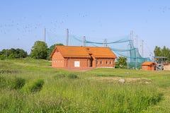 Bird banding station Stock Photos