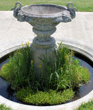 Bird bath. In ornamental garden Stock Image