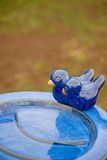 Bird bath. Ornamental blue bird bath with two fake birds in a public place Stock Photo