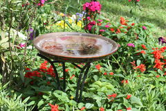 Bird Bath. Sitting in front of an array of colorful flowers Royalty Free Stock Image